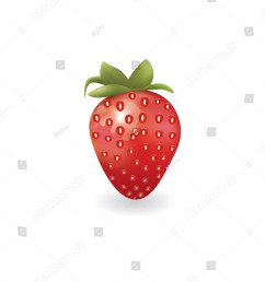 strawberry on white background vector [ 1172 x 1600 Pixel ]