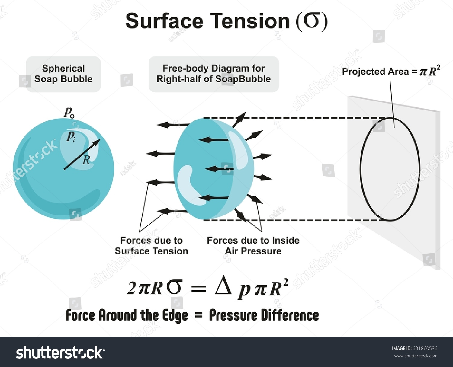 surface waves diagram t1 crossover cable tension physics lesson spherical soap stock vector
