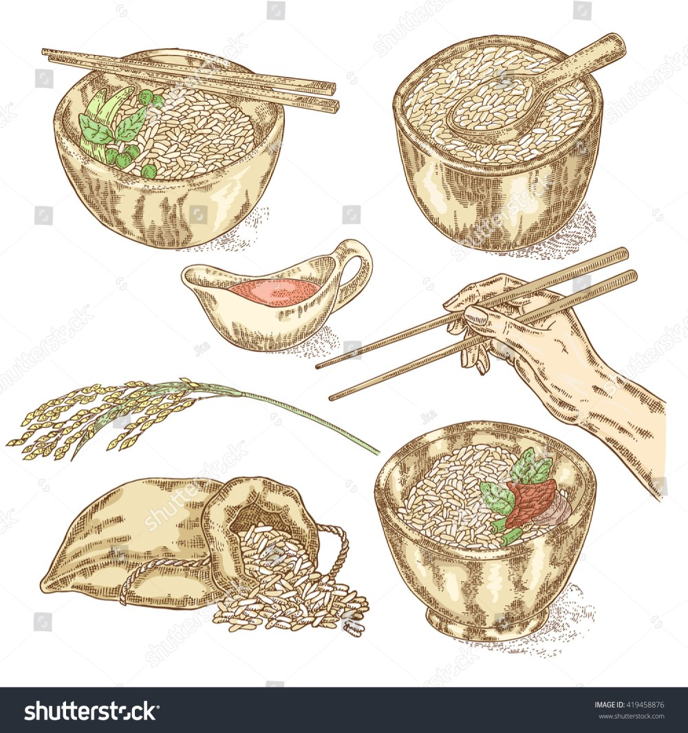 medium resolution of thai jasmine rice in a bowl hand with chopsticks hand drawn rice set vector illustration in sketch style vector
