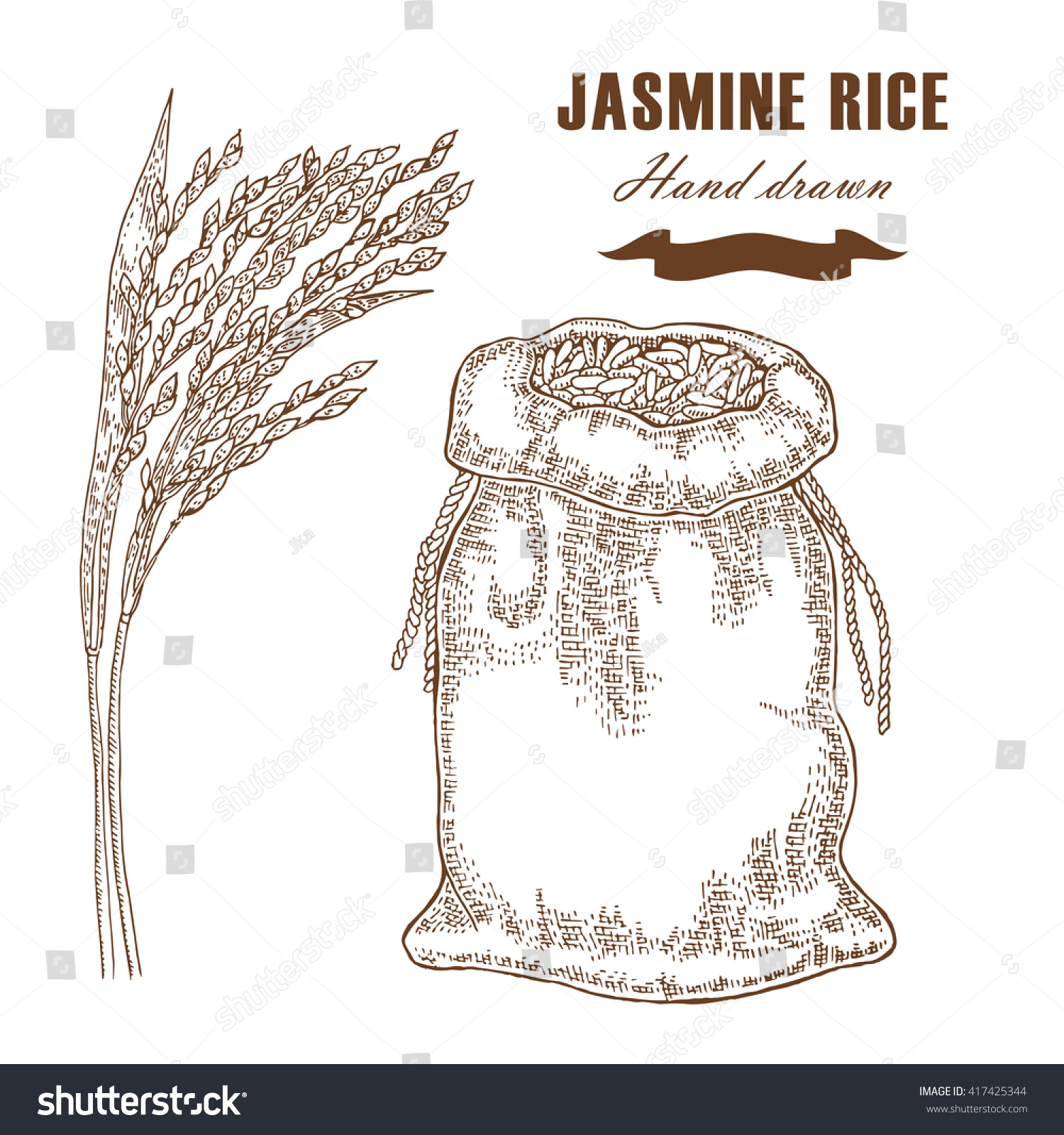 hight resolution of thai jasmine rice in sack rice plant hand drawn vector illustration in sketch style