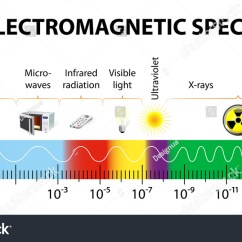 Electromagnetic Spectrum Diagram Labeled Pioneer Dvd Radio Wiring Vector Different Types