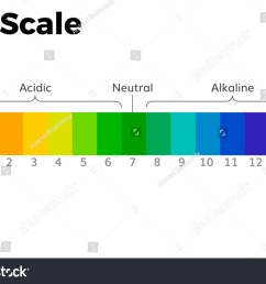 the ph scale universal indicator ph color chart diagram acidic alkaline values common substances vector  [ 1500 x 1096 Pixel ]