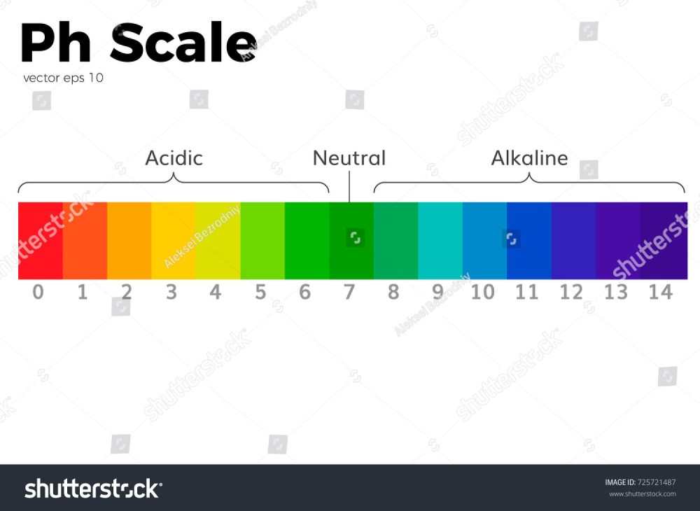 medium resolution of the ph scale universal indicator ph color chart diagram acidic alkaline values common substances vector