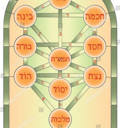 the tree of life mystical symbol used in the kabbalah of esoteric judaism  [ 1050 x 1600 Pixel ]