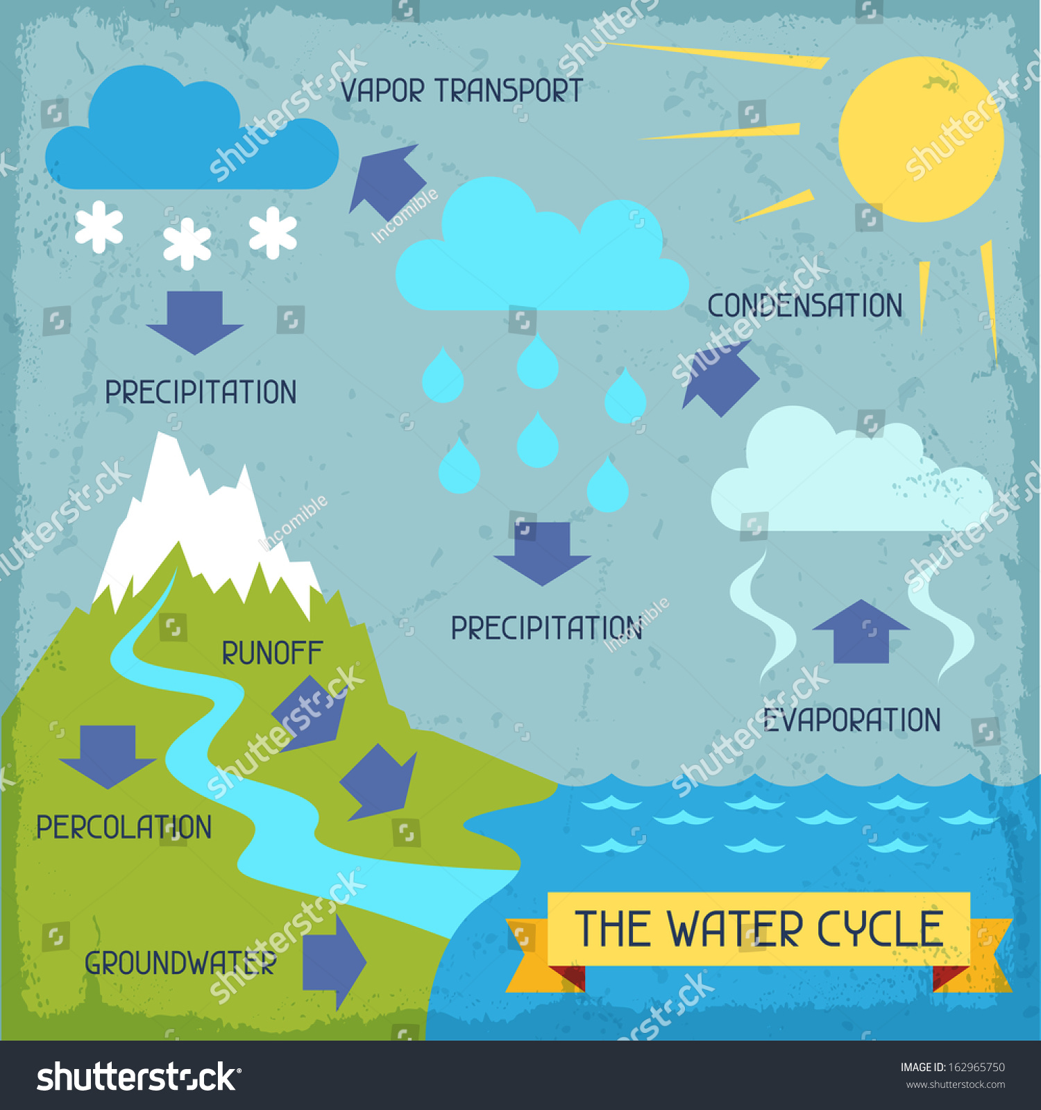 Water Cycle Poster Nature Infographics Flat Stock Vector