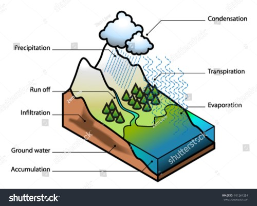 small resolution of water cycle showing evaporation transpiration condensation