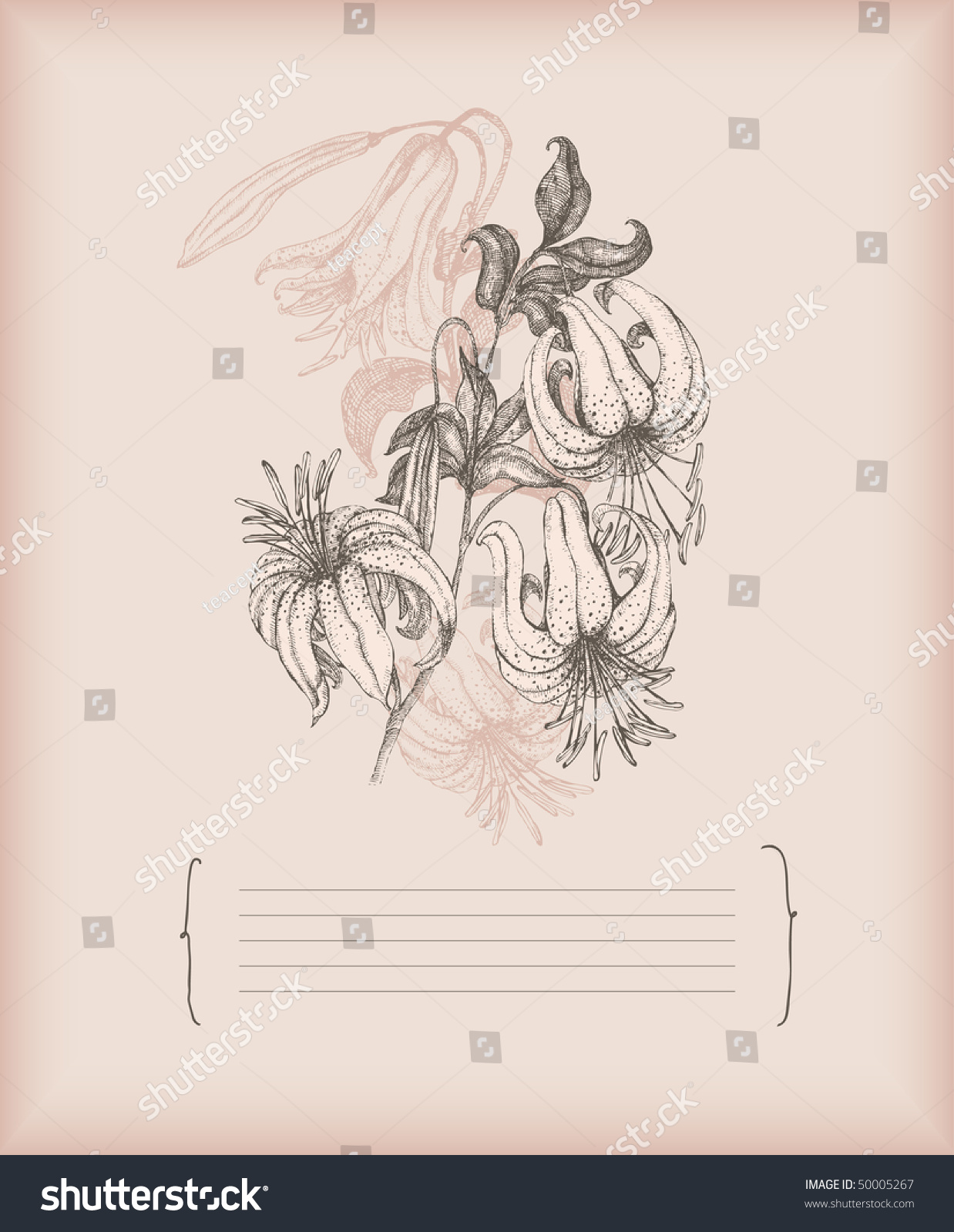 hight resolution of tiger lily drawing stock vector royalty free 50005267 shutterstock diagram of tiger lily
