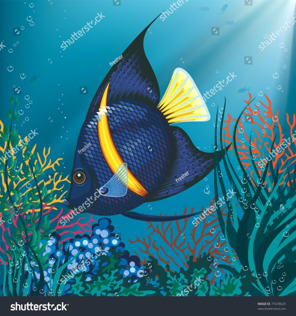 Tropical Fish Swimming Underwater Above Water Plant Stock