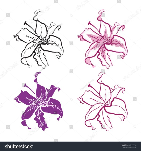 20 Orchid Lily Tattoos Outlines Ideas And Designs