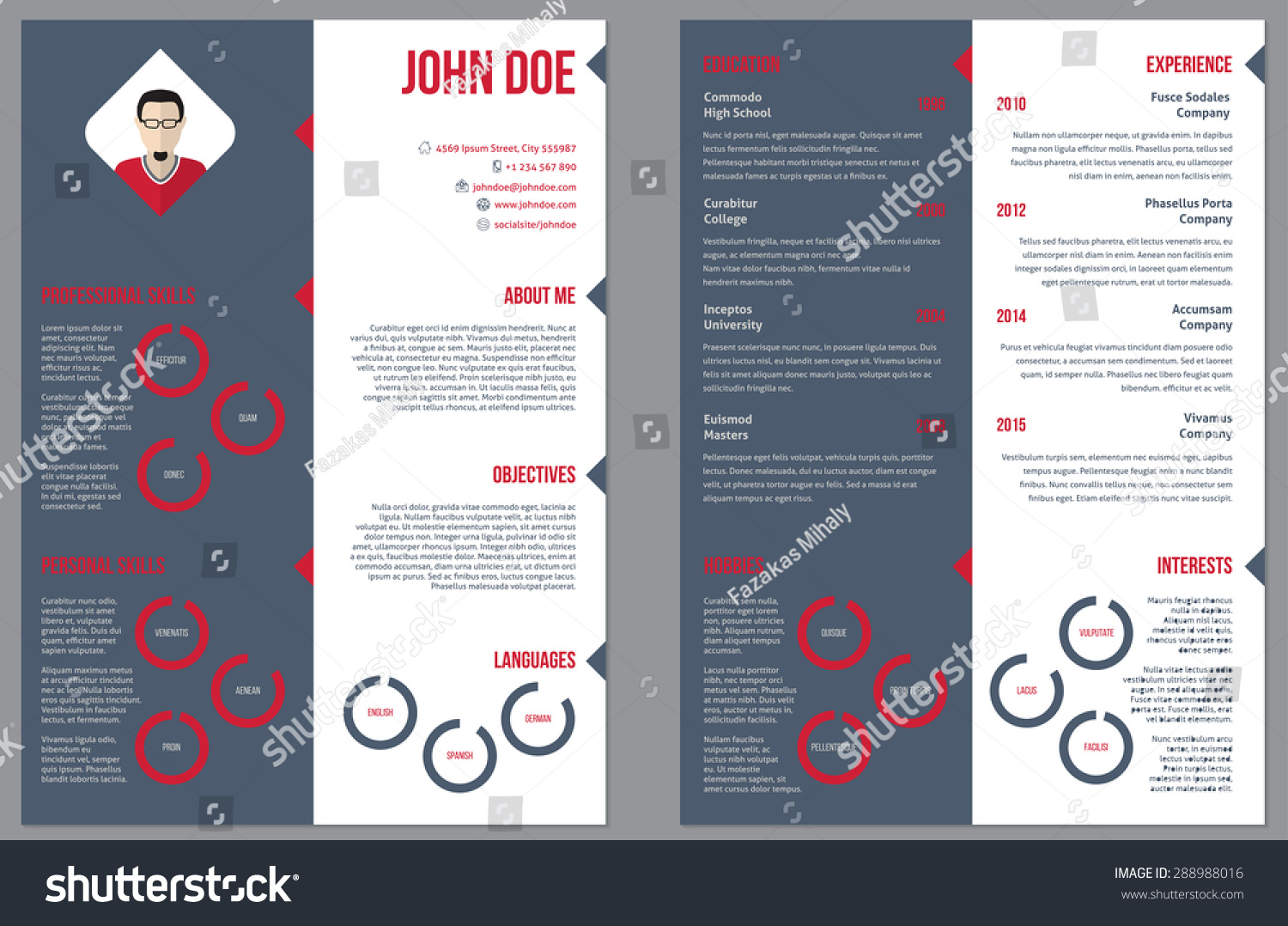 Resume Double Sided Two Sided Resume Curriculum Vitae Cv Design Template Stock
