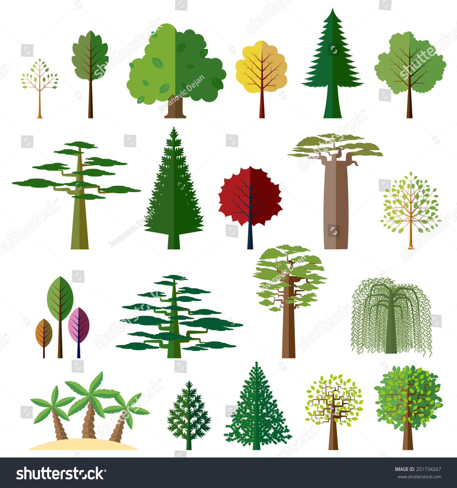 Various Types Deciduous Evergreen Trees Set Stock Vector