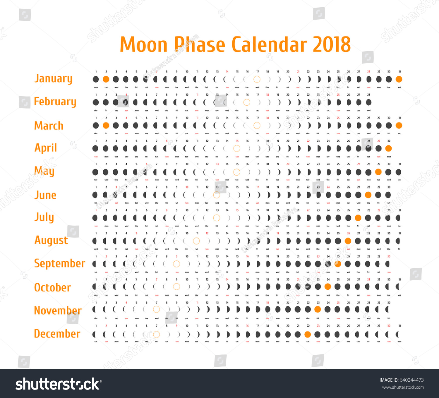 Vector Astrological Calendar Moon Phase Stock Vector
