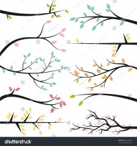 Vector Collection Tree Branch Silhouettes Stock Vector ...