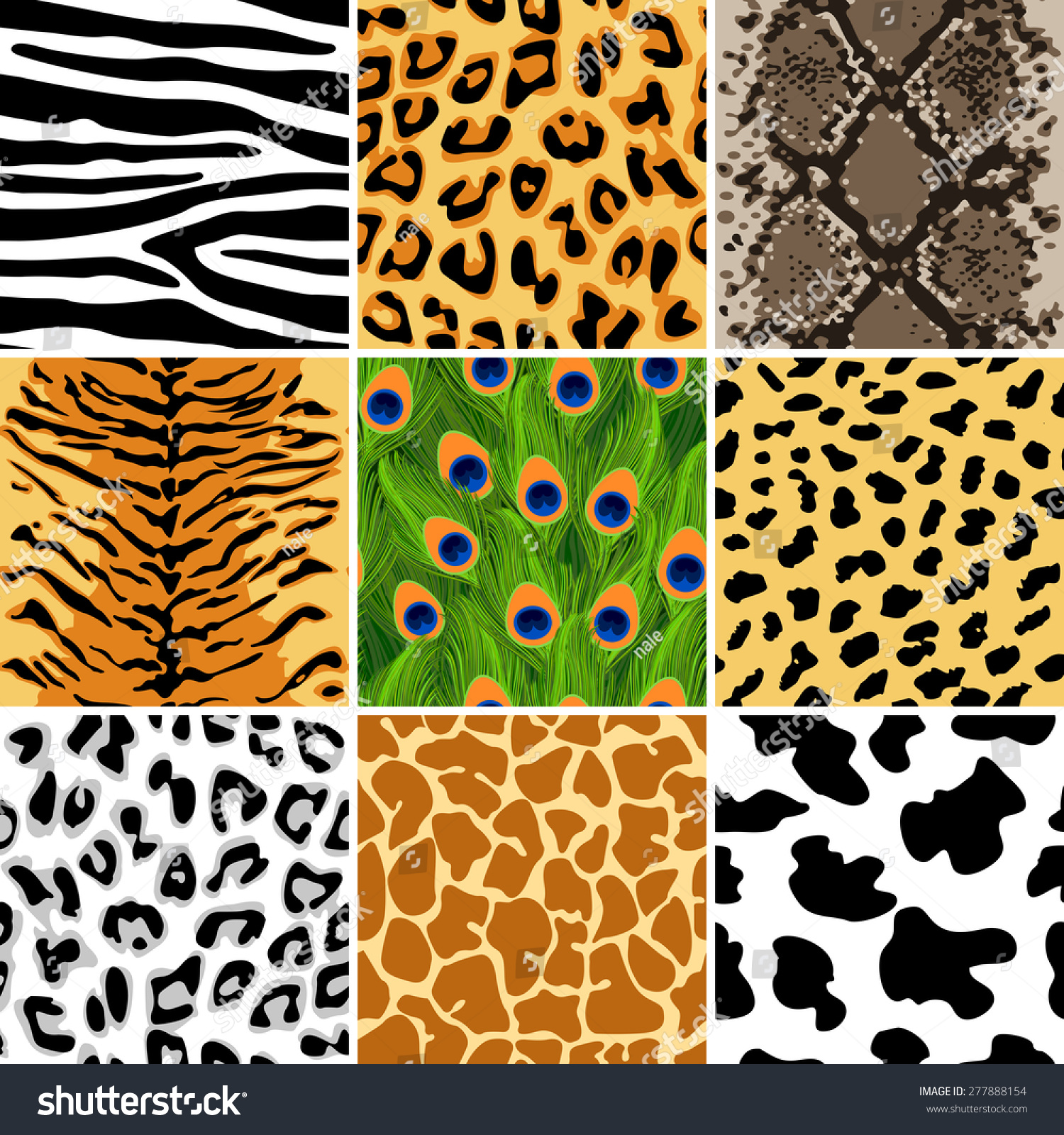 Vector Illustration Of Animal Seamless Patterns Set Zebra