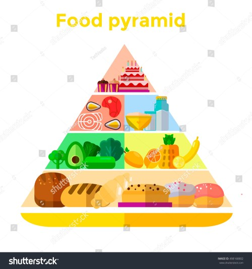 small resolution of vector illustration of food pyramid infographics with abstract template diagram for healthy eating and diet