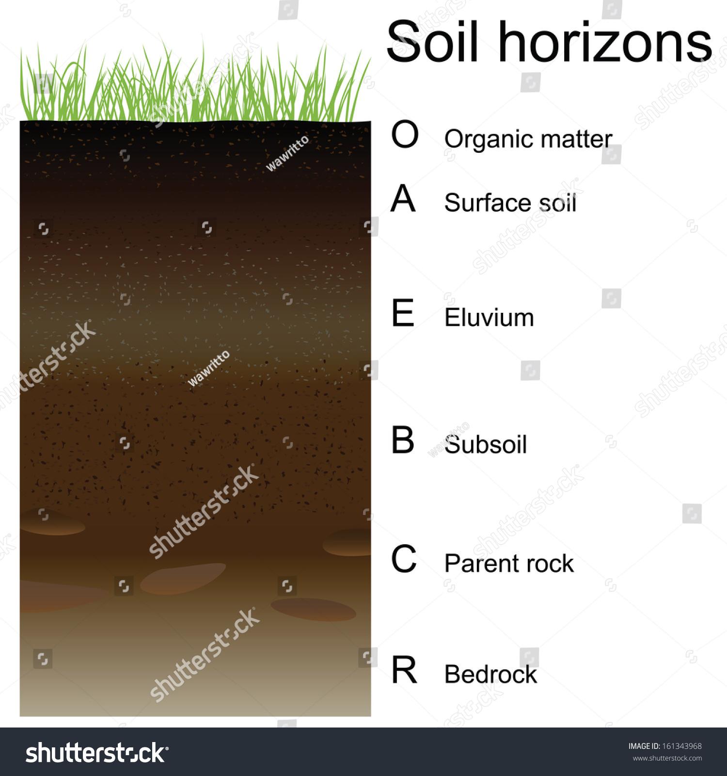 Vector Illustration Soil Horizons Layers Easy Stock Vector