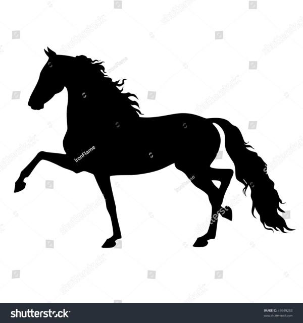 Vector Running Morgan Horse Isolated Stock