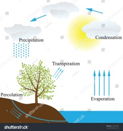 vector schematic representation of the water cycle in nature  [ 1500 x 1600 Pixel ]