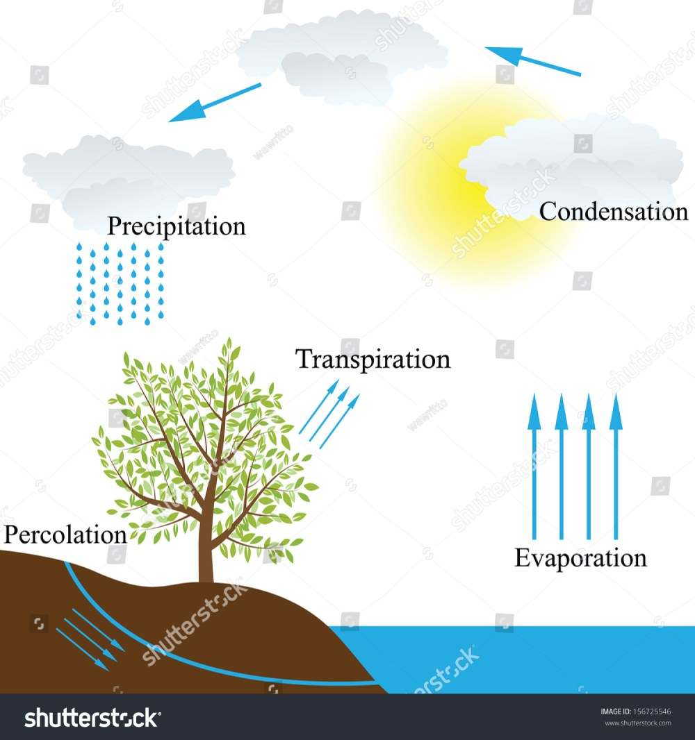 medium resolution of vector schematic representation of the water cycle in nature