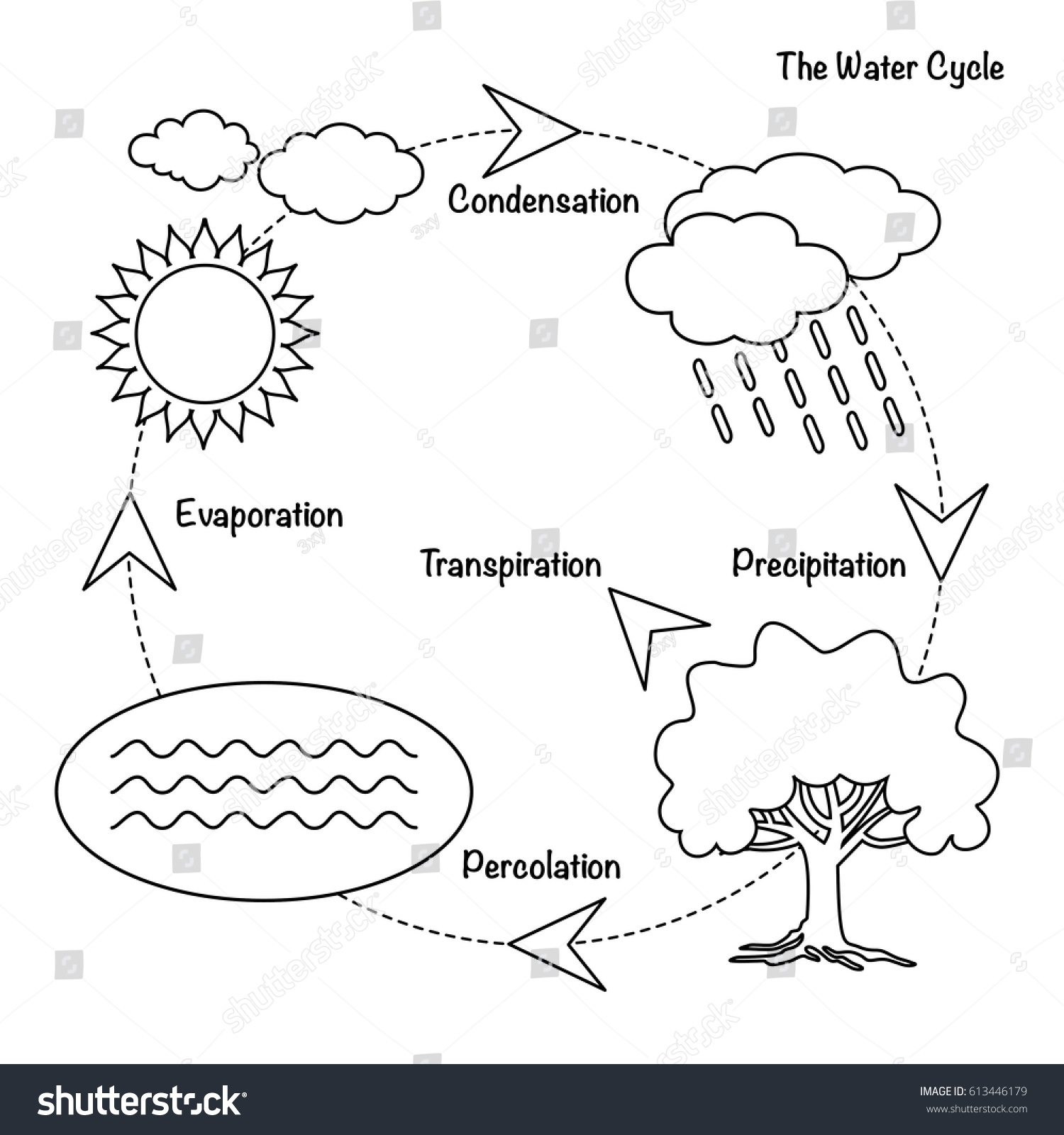 Vector Schematic Representation Water Cycle Nature Stock