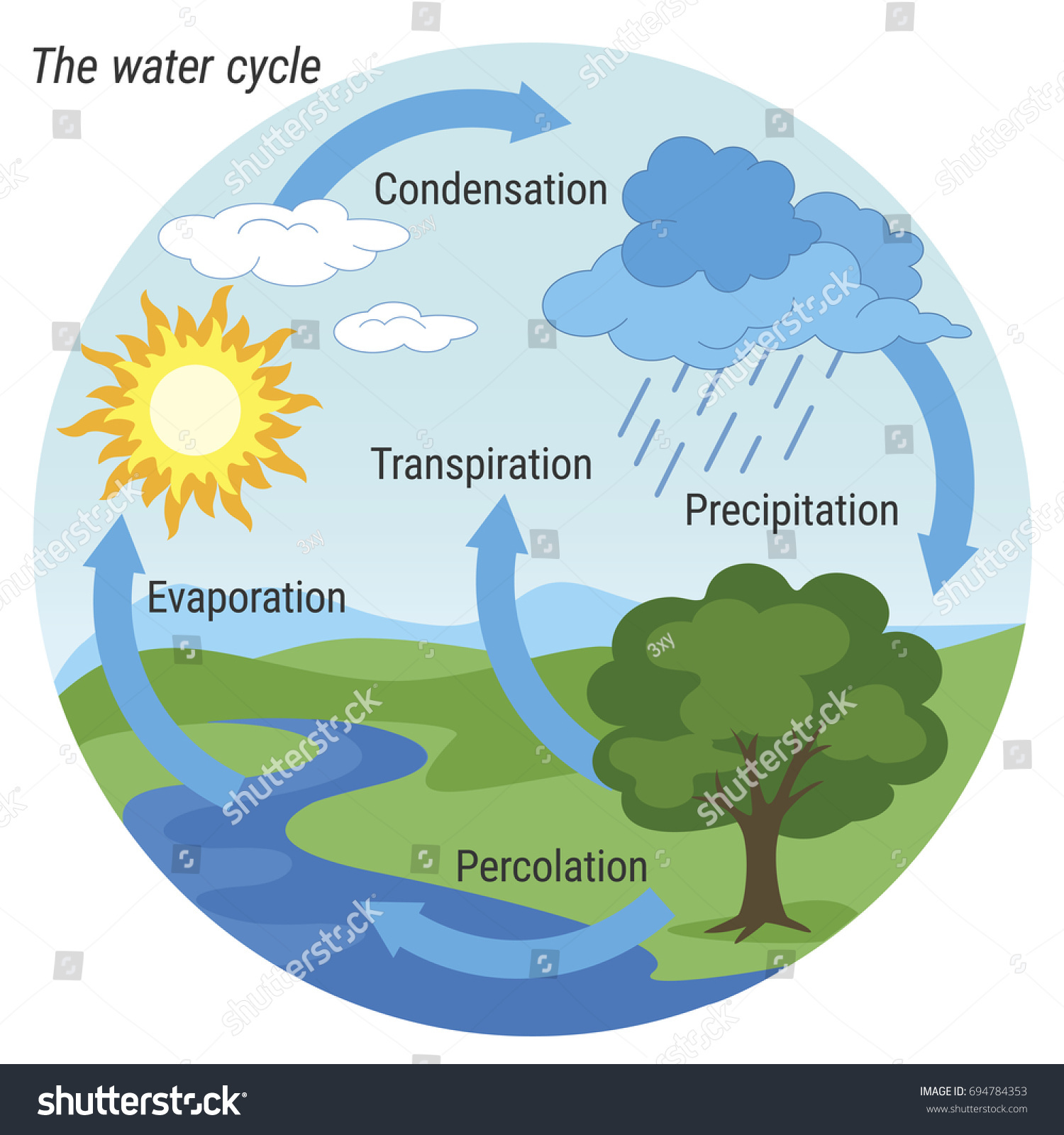 explain water cycle with diagram 7 pin trailer socket wiring ireland vector schematic representation nature stock