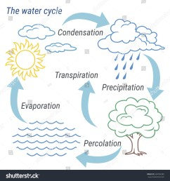 vector schematic representation of the water cycle in nature illustration of diagram water cycle  [ 1500 x 1600 Pixel ]