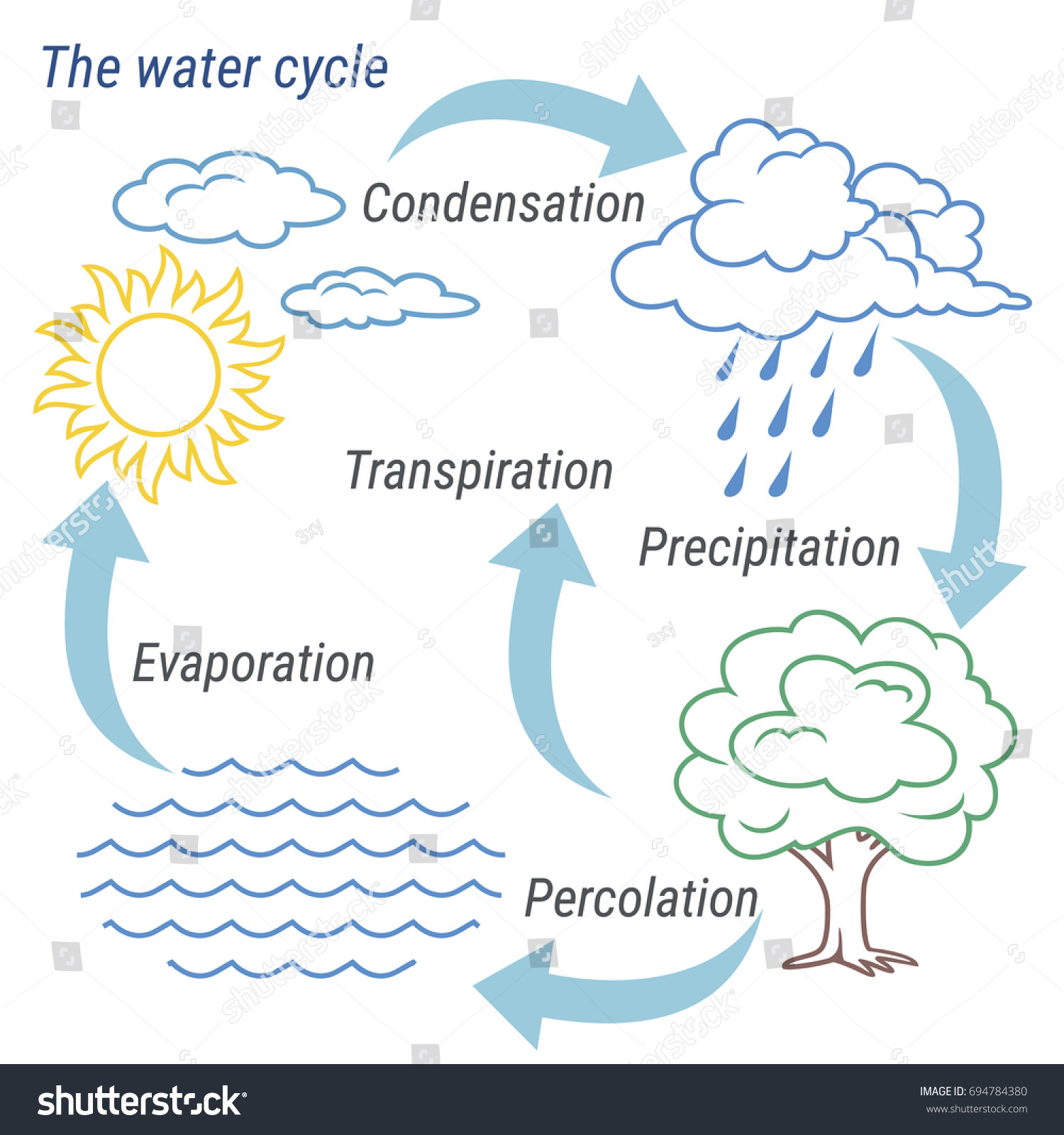 hight resolution of vector schematic representation of the water cycle in nature illustration of diagram water cycle