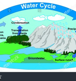 vector water cycle nature all part stock vector 543156805 water cycle diagram with explain water cycle diagram with transpiration [ 1500 x 900 Pixel ]