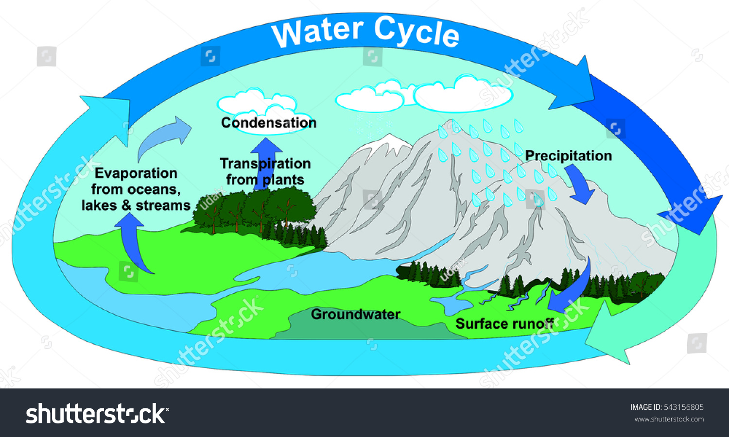 hight resolution of vector water cycle nature all part stock vector 543156805 water cycle diagram with explain water cycle diagram with transpiration