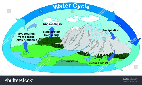 small resolution of vector water cycle nature all part stock vector 543156805 water cycle diagram with explain water cycle diagram with transpiration