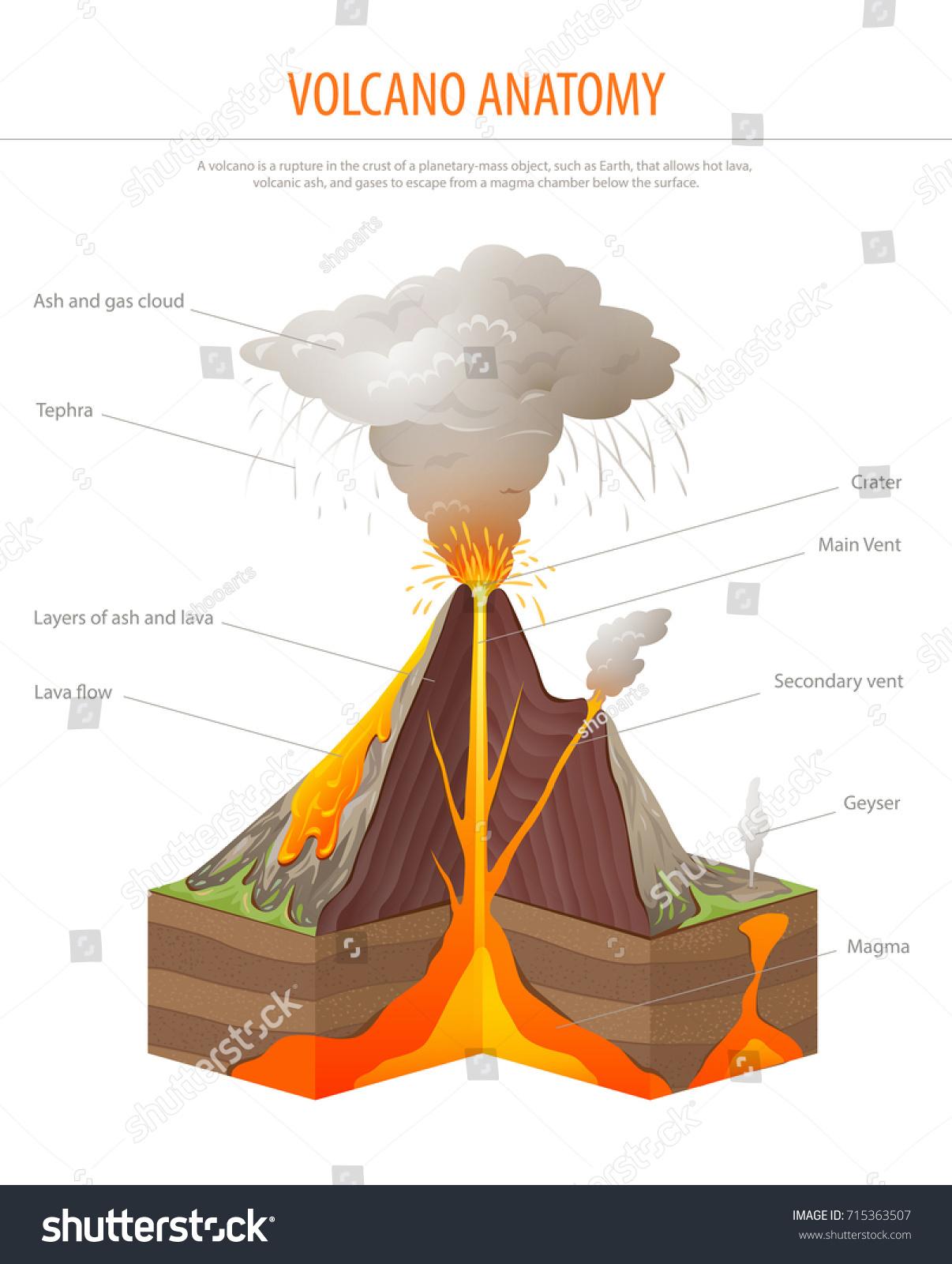 Volcano Cross Section Education Poster Vector Stock Vector