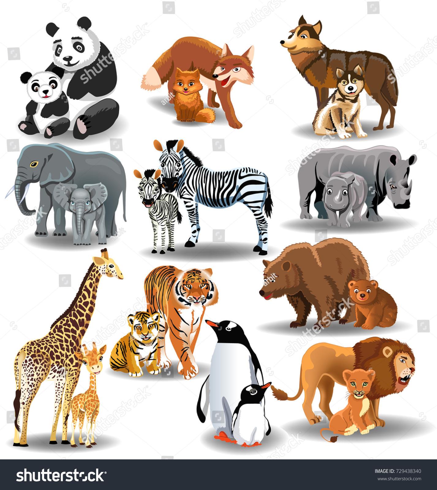 Wild Animals Their Babies Stock Vector