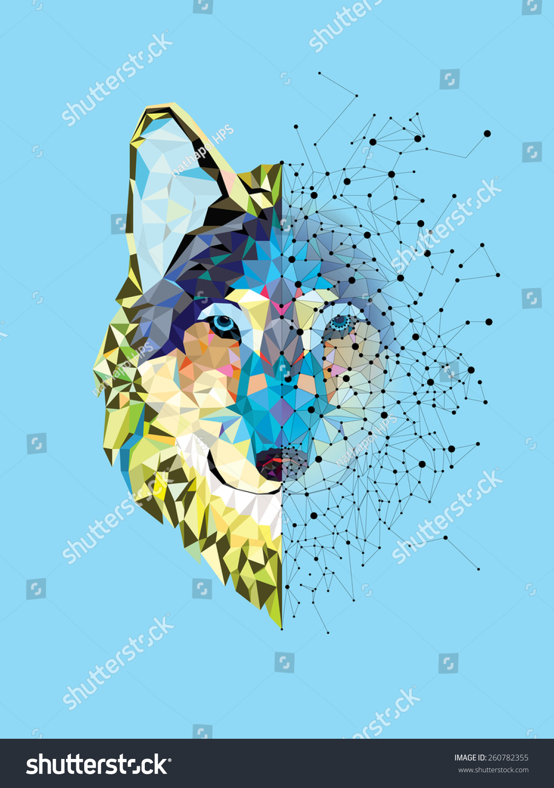 Wolf Head In Geometric Pattern With Star Line Vector