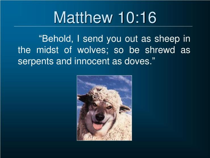 Image result for free photo of Matthew 10:16-23