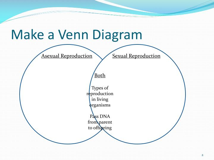 Ppt  Asexual Vs Sexual Reproduction Powerpoint