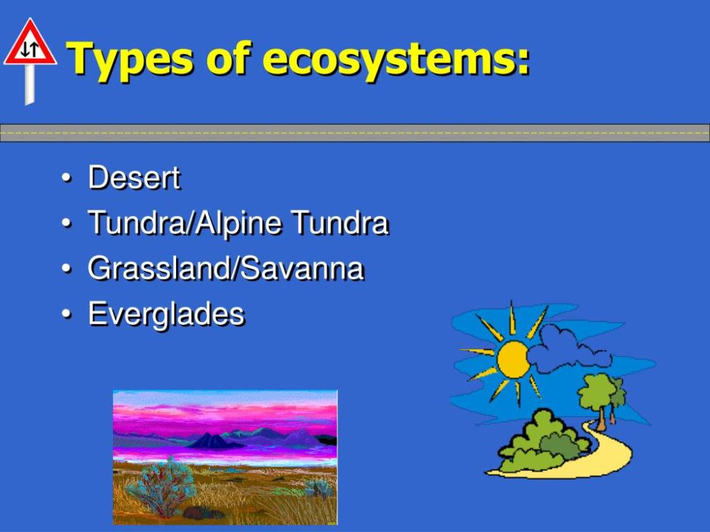 medium resolution of Types Of Biomes Worksheet   Printable Worksheets and Activities for  Teachers