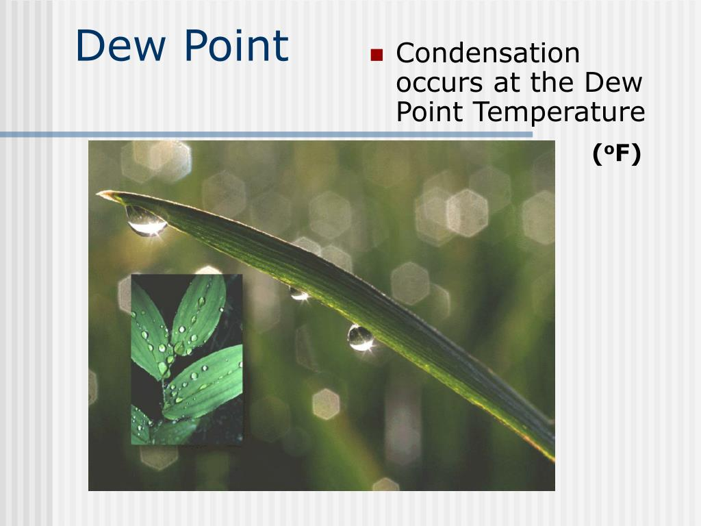 Point 0 Dew Chart Temp