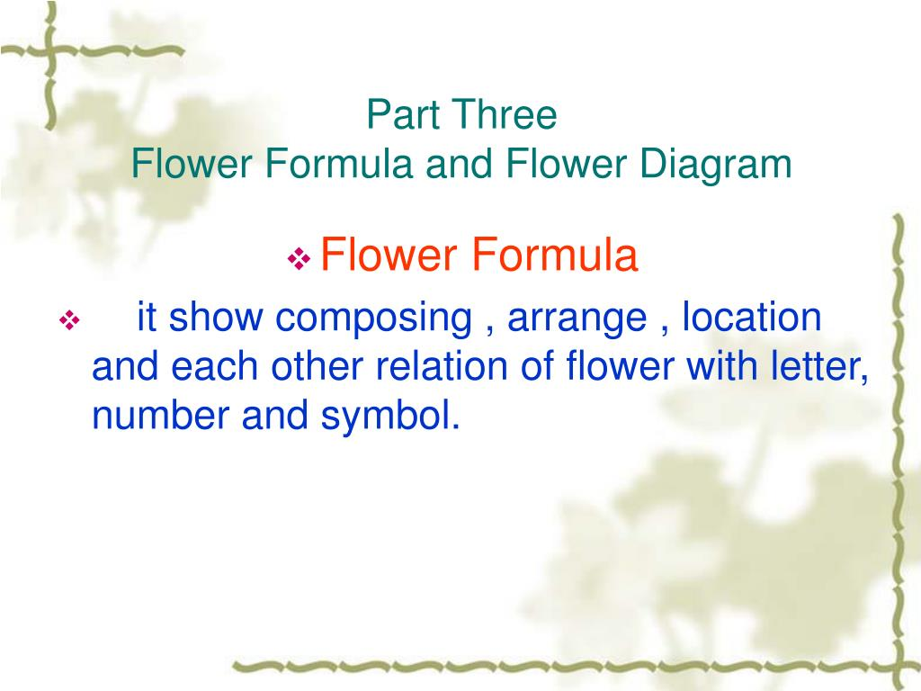 hight resolution of diagram of flower part