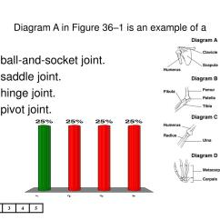 Pivot Joint Diagram Mga Wiring Ppt Which Of The Following Is Not Part Axial