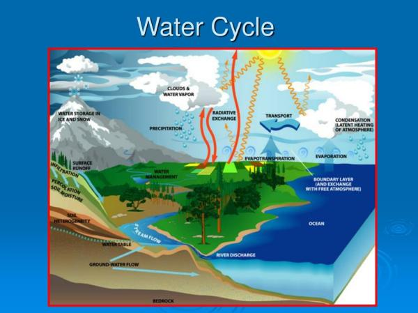 PPT Water Cycle PowerPoint Presentation ID198912