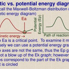 Potential Energy Diagram Worksheet Key Fluorescent Ballast Replacement Wiring Ppt Kinetic Vs Diagrams Powerpoint