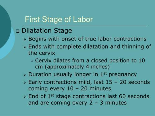 small resolution of Stages Of Labor Worksheet   Printable Worksheets and Activities for  Teachers