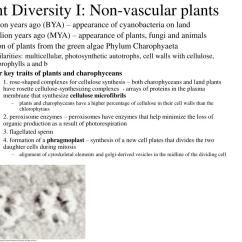 Non Vascular Plant Diagram Best Software For Mac Worksheet And Nonvascular Plants