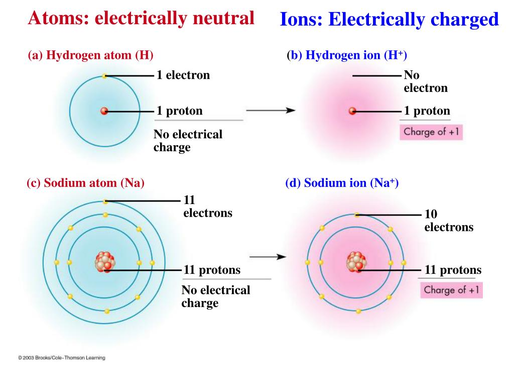 hight resolution of ppt unifying characteristics of life powerpoint atom electrically neutral entity atom electrically neutral entity