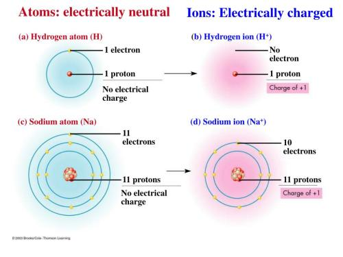 small resolution of ppt unifying characteristics of life powerpoint atom electrically neutral entity atom electrically neutral entity