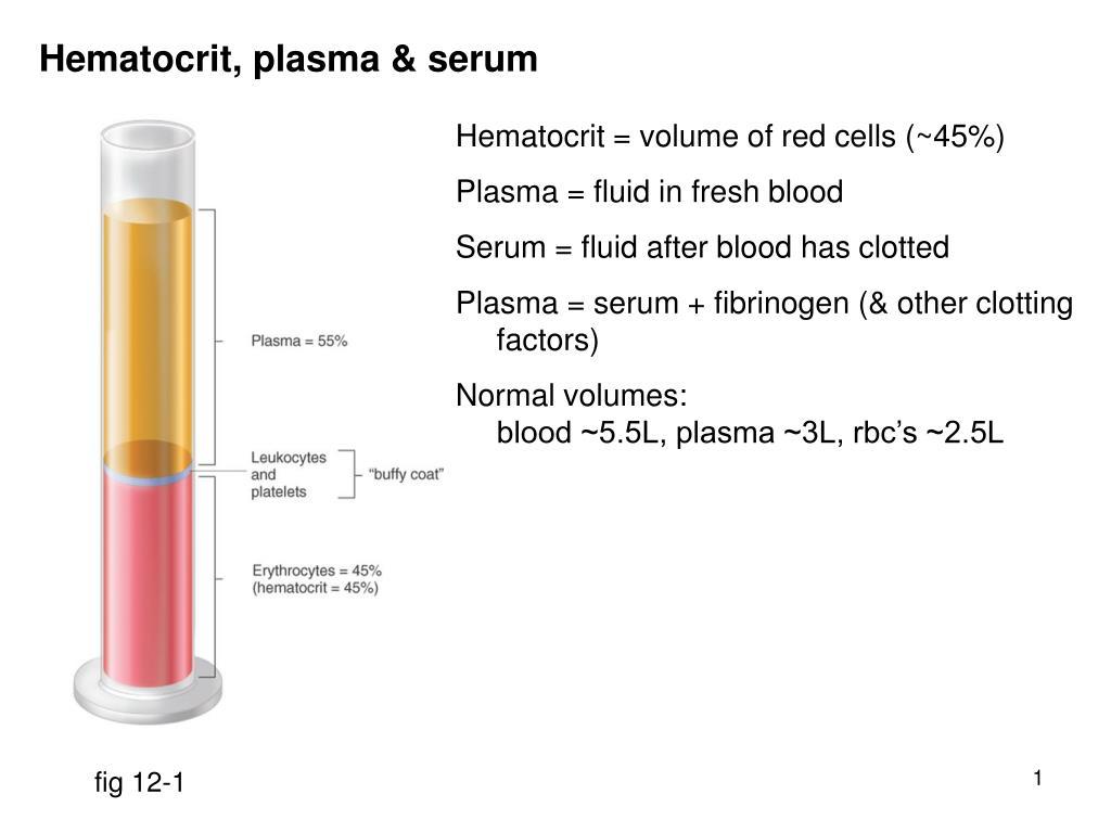 PPT - Hematocrit. plasma & serum PowerPoint Presentation. free download - ID:310842