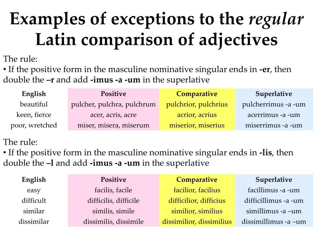 Latin Superlatives Worksheet