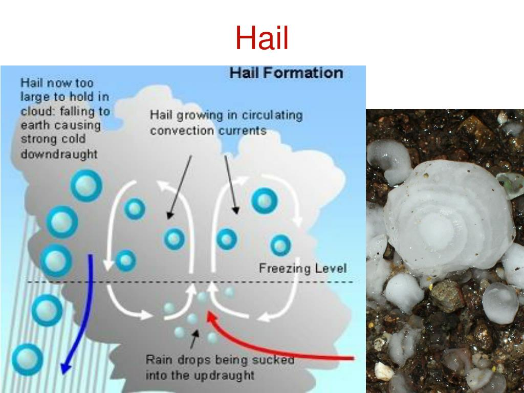 PPT - Severe Weather: Hail. Tornadoes and Wind Events PowerPoint Presentation - ID:428422