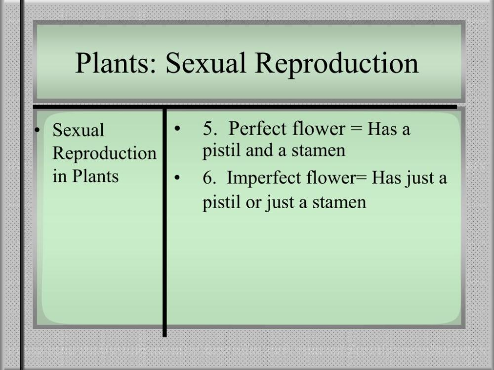 medium resolution of Wind Pollination Worksheet   Printable Worksheets and Activities for  Teachers
