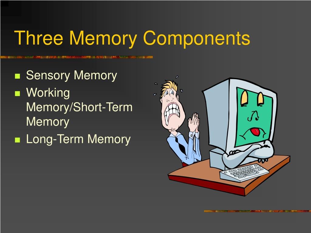 PPT  Three Stages of Memory PowerPoint Presentation  ID
